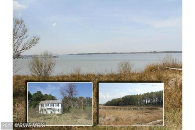 16374 Piney Point Road, Piney Point, MD 20674 (#SM9559371) :: Pearson Smith Realty