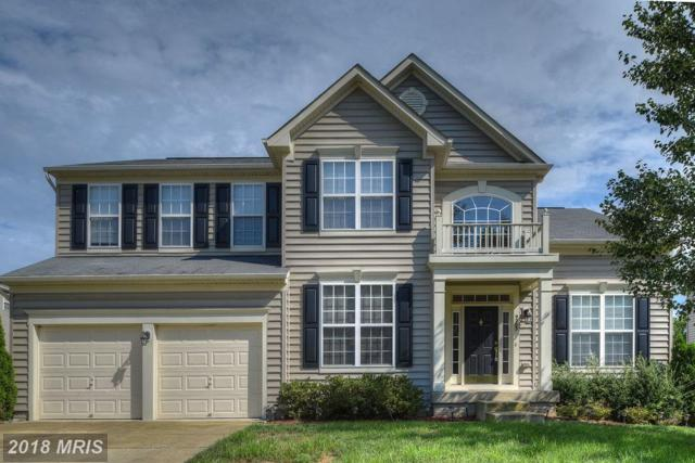 9203 Holly Leaf Drive, Fredericksburg, VA 22407 (#SP10128535) :: AJ Team Realty