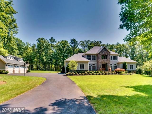 11905 Honor Bridge Farm Drive, Spotsylvania, VA 22551 (#SP10285379) :: LoCoMusings
