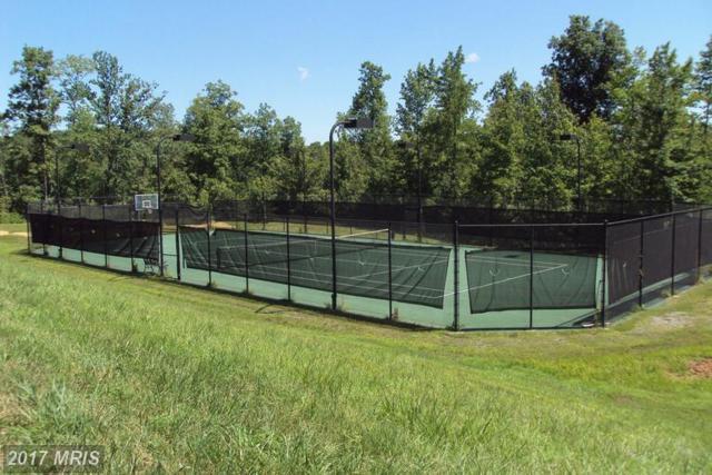 Eagle Rock Trail, Spotsylvania, VA 22551 (#SP8147849) :: LoCoMusings