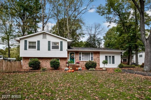 10700 Bluebird Lane, Spotsylvania, VA 22553 (#SP9801502) :: LoCoMusings