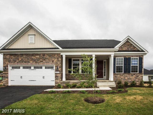 5835 New Berne Road, Fredericksburg, VA 22407 (#SP9959940) :: Pearson Smith Realty