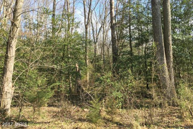 6 Foundation Drive, Fredericksburg, VA 22405 (#ST9561310) :: LoCoMusings