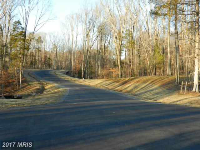 Hopewell Drive, Fredericksburg, VA 22406 (#ST9577267) :: Pearson Smith Realty