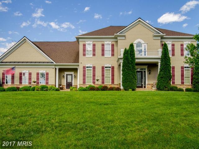 17 Stefaniga Farms Drive, Stafford, VA 22556 (#ST9912041) :: Pearson Smith Realty
