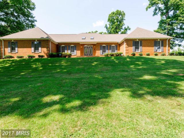 7 English Hills Drive, Fredericksburg, VA 22406 (#ST9914908) :: Pearson Smith Realty