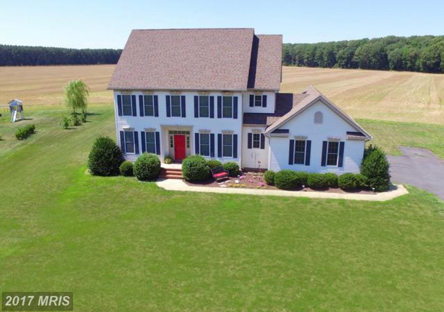 13557 Rustling Oaks Drive, Wye Mills, MD 21679 (#TA9869484) :: Pearson Smith Realty
