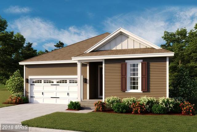 Gemstone Drive Onyx, Hagerstown, MD 21740 (#WA10196349) :: RE/MAX Gateway