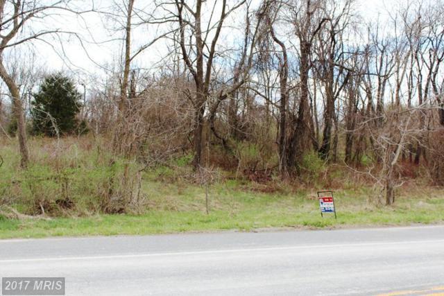 1448 Oak Ridge Place, Hagerstown, MD 21740 (#WA8487441) :: LoCoMusings