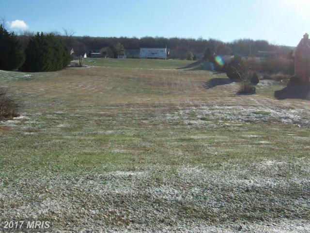 11515 Orange Blossom Court, Smithsburg, MD 21783 (#WA9551629) :: Pearson Smith Realty