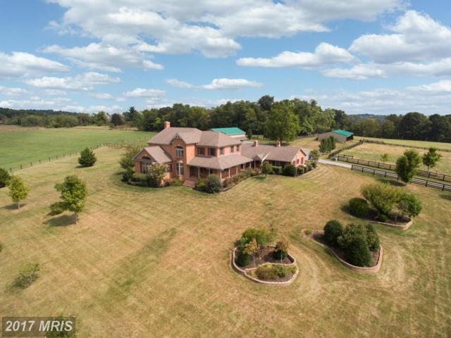 12019 Kemps Mill Road, Williamsport, MD 21795 (#WA9763991) :: Pearson Smith Realty