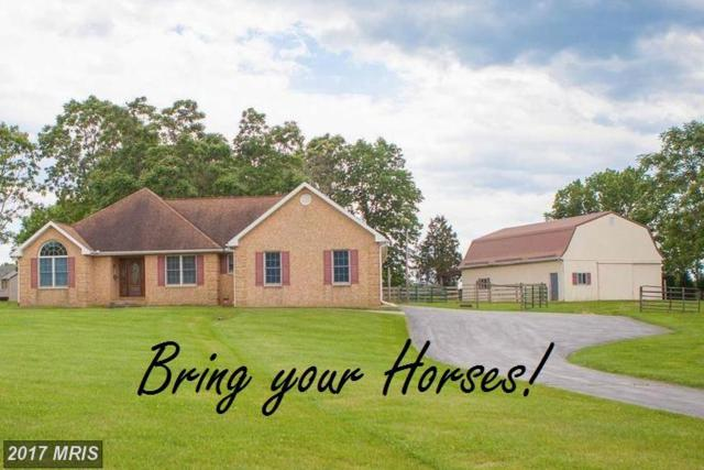 16155 River Bend Court, Williamsport, MD 21795 (#WA9966866) :: Pearson Smith Realty