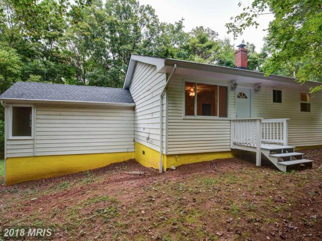 673 Creek Road, Front Royal, VA 22630 (#WR10055496) :: The Gus Anthony Team