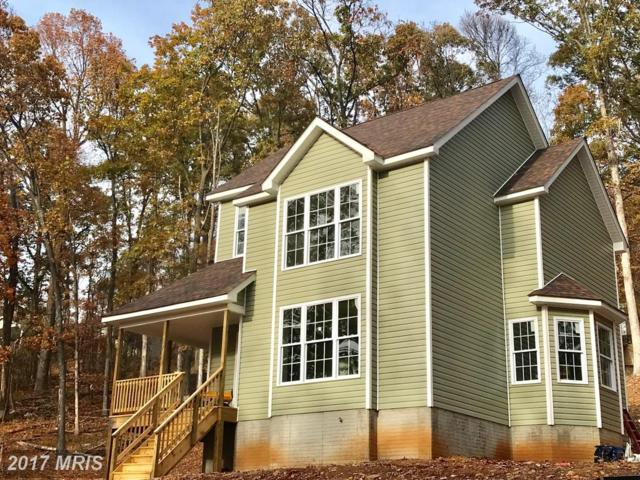 16 Golden Russet Drive, Linden, VA 22642 (#WR10065929) :: Pearson Smith Realty