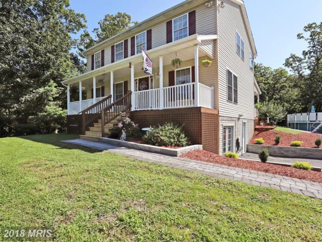 4162 Panhandle Road, Front Royal, VA 22630 (#WR10305414) :: The Maryland Group of Long & Foster
