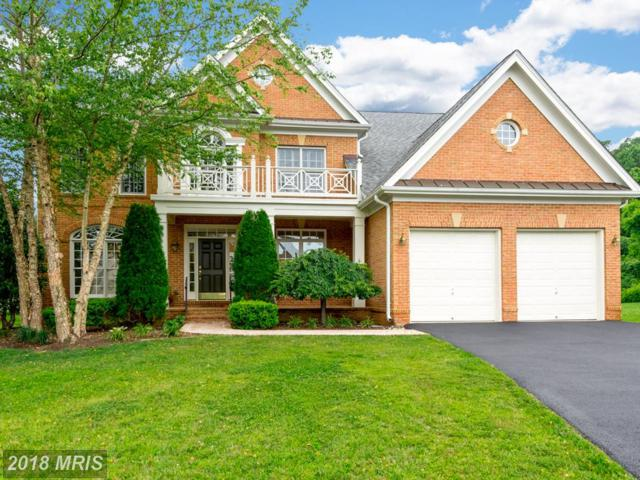 714 Pearson Point Place, Annapolis, MD 21401 (#AA10257534) :: Bob Lucido Team of Keller Williams Integrity