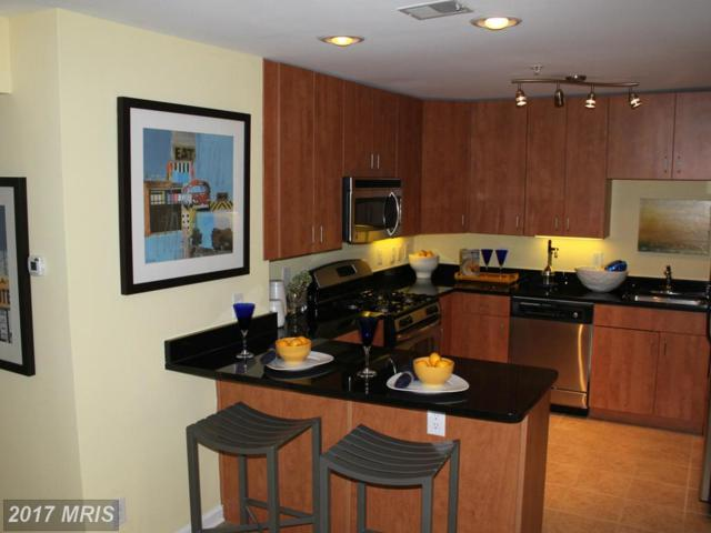 1138 Cove Road #302, Annapolis, MD 21403 (#AA8682212) :: Pearson Smith Realty
