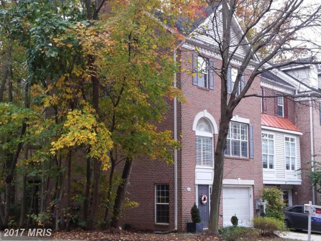 615 Snow Goose Lane, Annapolis, MD 21409 (#AA9905142) :: Pearson Smith Realty