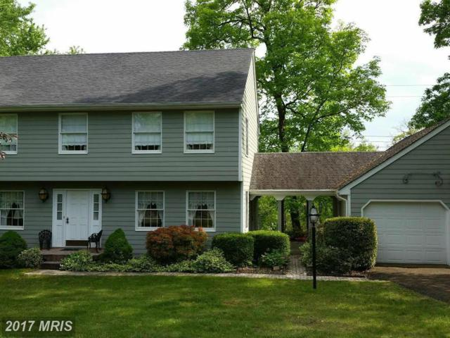 13830 Briarwood Drive SW, Cresaptown, MD 21502 (#AL9703224) :: Pearson Smith Realty