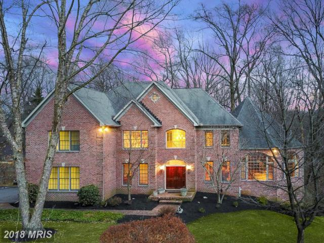 9 Hawick Court, Owings Mills, MD 21117 (#BC10158376) :: Browning Homes Group