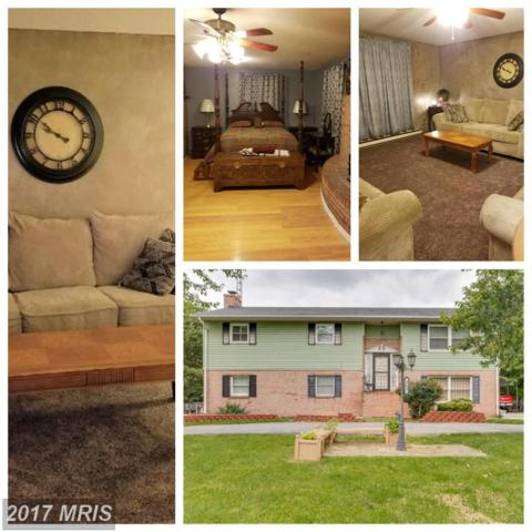 263 Braddock Boulevard, Inwood, WV 25428 (#BE10035657) :: Pearson Smith Realty