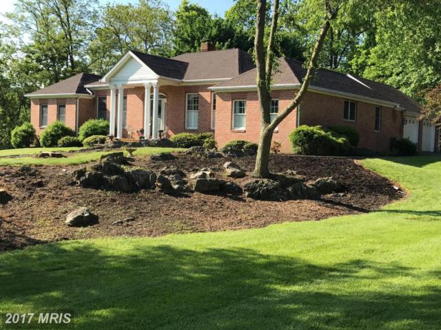 67 Thanes Way, Martinsburg, WV 25403 (#BE9790455) :: Pearson Smith Realty