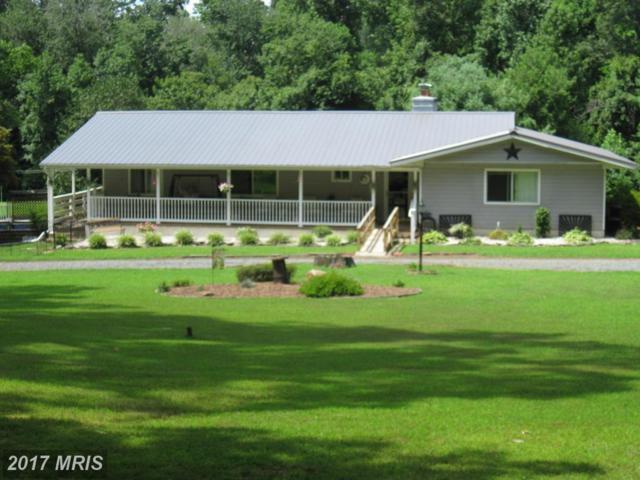 315 Hazelmoor Drive, Earleville, MD 21919 (#CC9602959) :: LoCoMusings