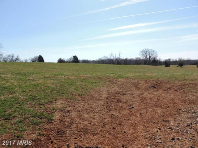Mount Zion Church Road, Culpeper, VA 22701 (#CU8294455) :: Pearson Smith Realty