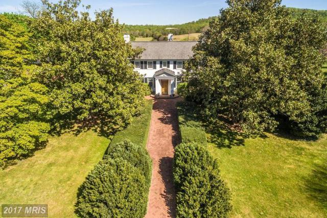 9071 Maple Lawn Lane, Rapidan, VA 22733 (#CU8624848) :: Pearson Smith Realty
