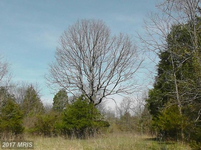 C Old Barn Road, Rixeyville, VA 22737 (#CU9597628) :: Pearson Smith Realty