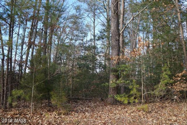 Golansville Rd, Ruther Glen, VA 22546 (#CV9505734) :: Keller Williams Pat Hiban Real Estate Group
