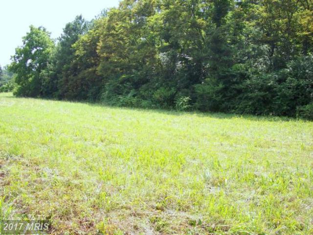 0 Perimeter Road, Milford, VA 22514 (#CV9523688) :: Pearson Smith Realty