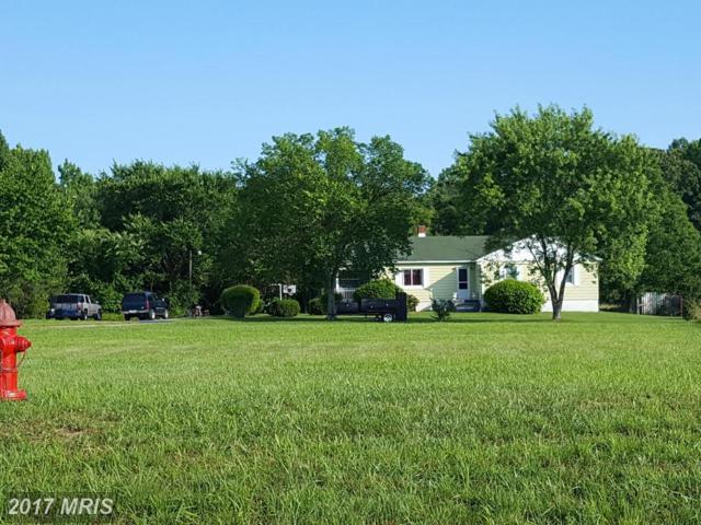 23435 Rogers Clark Boulevard, Ruther Glen, VA 22546 (#CV9683761) :: Keller Williams Pat Hiban Real Estate Group