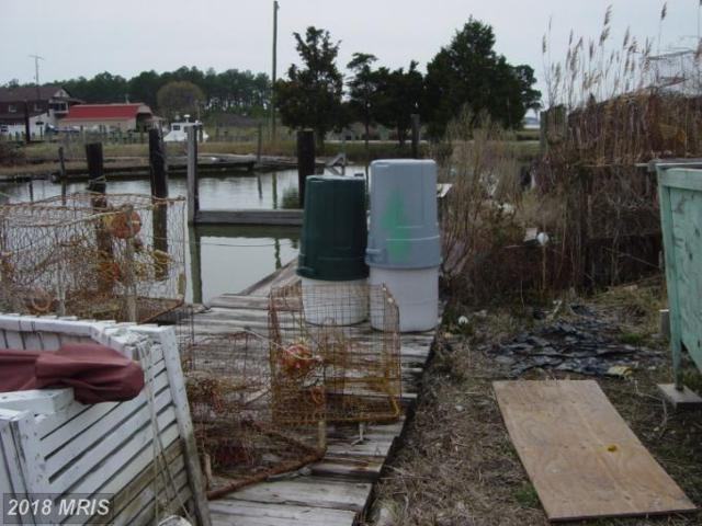 County Road, Fishing Creek, MD 21634 (#DO7599905) :: The Maryland Group of Long & Foster