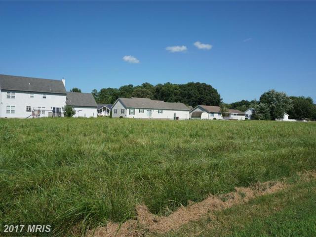 7 Arbutus Terrace, Cambridge, MD 21613 (#DO8373053) :: Pearson Smith Realty