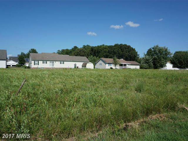 5 Arbutus Terrace, Cambridge, MD 21613 (MLS #DO8373069) :: RE/MAX Coast and Country
