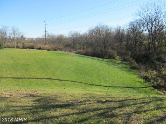 Hamilton Hills Drive, Chambersburg, PA 17202 (#FL9525518) :: Pearson Smith Realty