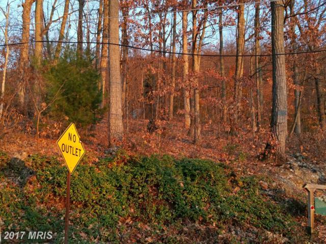 Hess Avenue, Waynesboro, PA 17268 (#FL9527674) :: Pearson Smith Realty