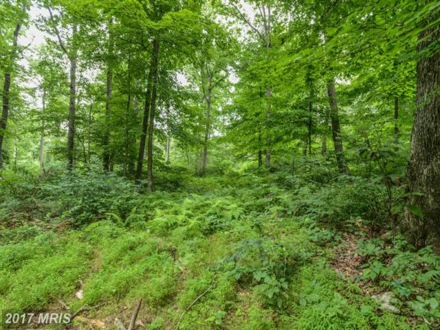 Browns Quarry Rd Lot 3, Sabillasville, MD 21780 (#FR9623610) :: Pearson Smith Realty