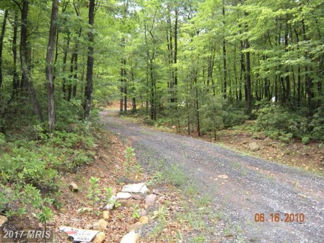 LOT 13 Great Mountain Lane, Winchester, VA 22602 (#FV7723402) :: Pearson Smith Realty
