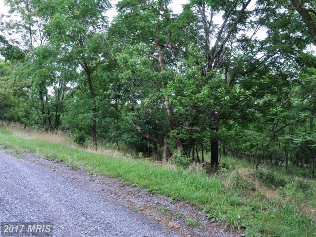 L-65 Sawmill Drive, Gore, VA 22637 (#FV8134394) :: LoCoMusings