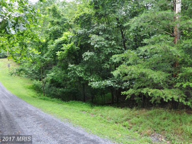 L-111 Blackberry Lane, Gore, VA 22637 (#FV8134401) :: LoCoMusings