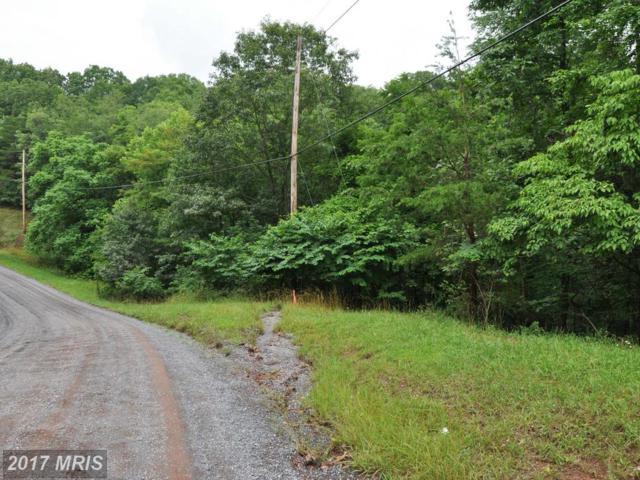 L-104 Logger Drive, Gore, VA 22637 (#FV8134404) :: LoCoMusings