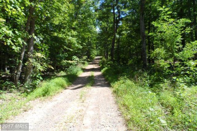 Hunters Rd, Gore, VA 22637 (#FV8163090) :: Pearson Smith Realty
