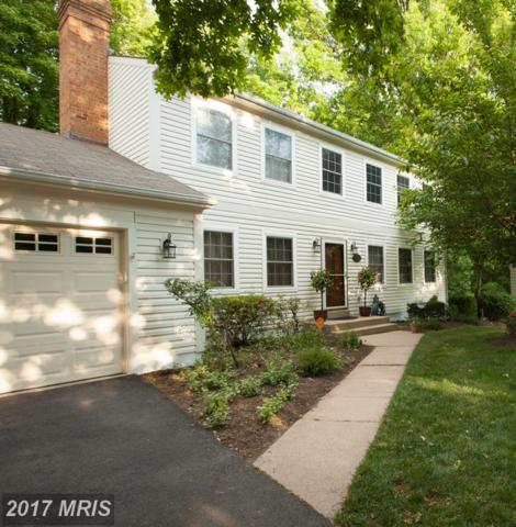 5607 Wood Thrush Court, Fairfax, VA 22032 (#FX9958424) :: Pearson Smith Realty