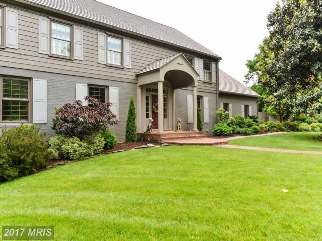 832 Emerald Drive, Alexandria, VA 22308 (#FX9958434) :: Pearson Smith Realty