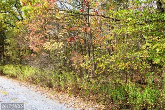 LOT Oak Hill Lane, Accident, MD 21520 (#GA8039116) :: Pearson Smith Realty
