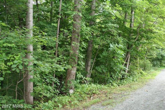 3 Rocky Road, Stanardsville, VA 22973 (#GR8436738) :: LoCoMusings