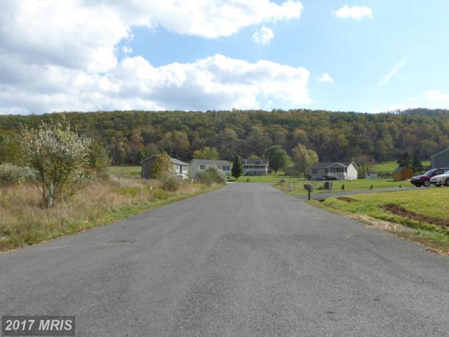 9 Sassafras, Wardensville, WV 26851 (#HD8243031) :: Pearson Smith Realty