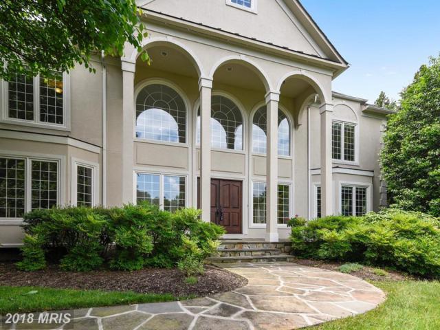 11387 Highbrook Court, Potomac Falls, VA 20165 (#LO10157075) :: Great Falls Great Homes